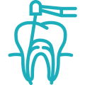EG ICONS Root Canals